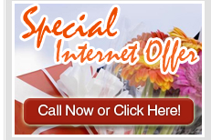 Special Internet Offer